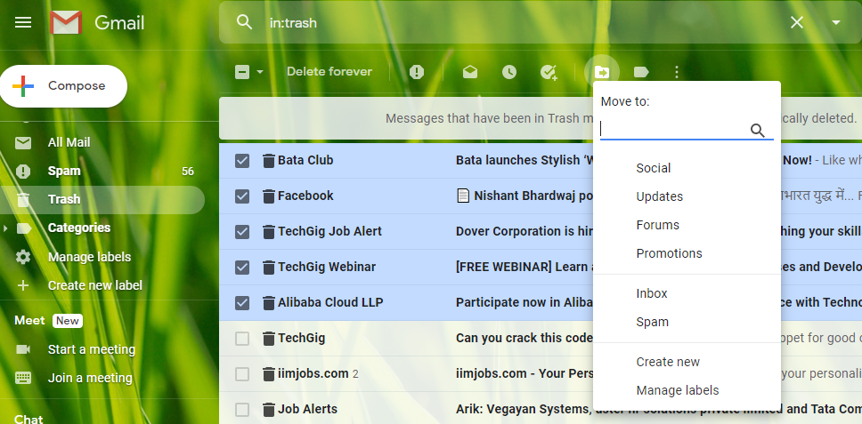 Retrieve Deleted Emails From Gmail